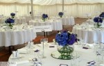 Reception - Winton House, Marquee