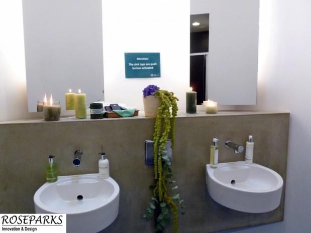 Flowers in Ladies Toilet