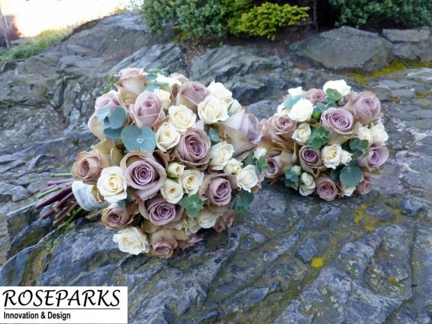 Bride & Flowergirls bridal flowers.