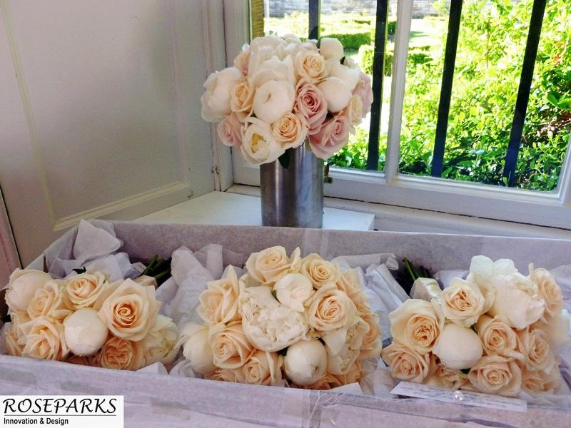 Philip carberry wedding